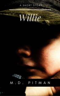 Willie cover
